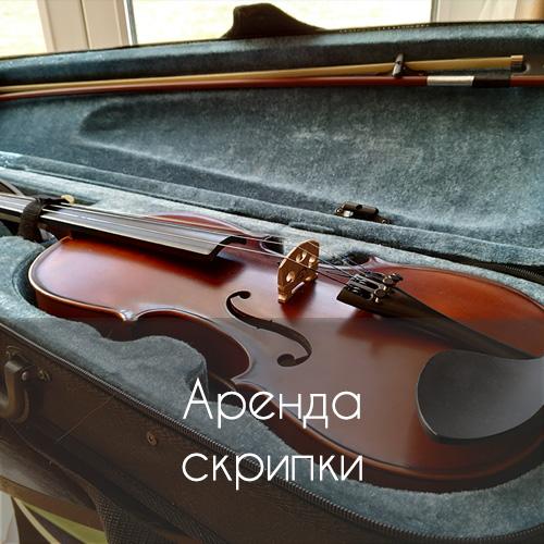 Аренда скрипки