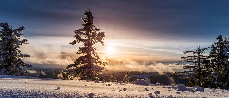 Куда сходить любителям классики снежной зимой?